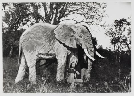 Eksotiske dyr på Vega, et kunstprosjekt for barn ledet av Terje Munthe, 1991.
